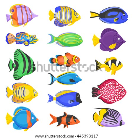 Exotic Tropical Fish Set Different Shapes Stock Vector