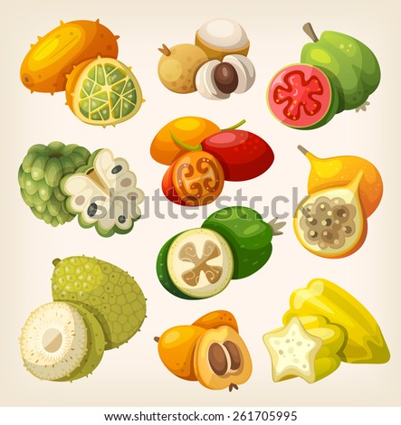 Exotic tropical fruit. Icons for labels and packages - stock vector