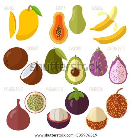 Exotic tropical Vector flat design fruits and berries icon set.