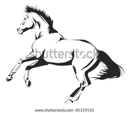 expressive horse vector sketch - stock vector