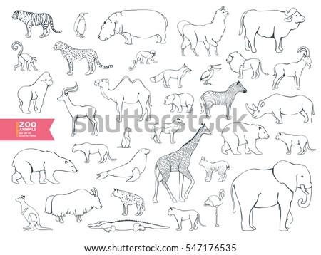 extra big set zoo animals contour cartoon for coloring book lama bull buffalo