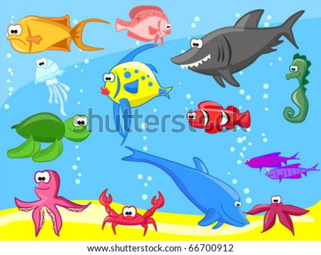 Extra large set  marine fishes