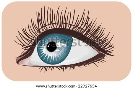 eye - stock vector