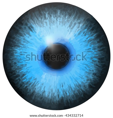Eye Iris Vector Painted Texture เวกเตอร์สต็อก 434332714 ...