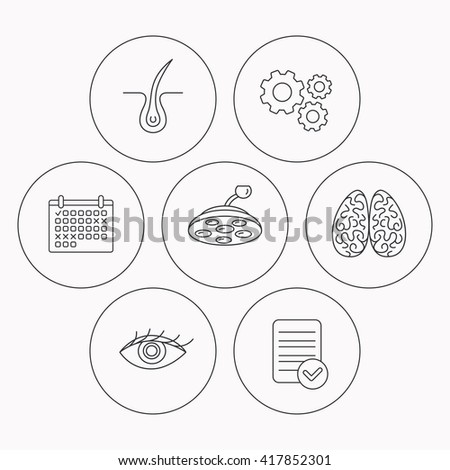 Eye, neurology brain and surgical lamp icons. Trichology linear sign. Check file, calendar and cogwheel icons. Vector - stock vector