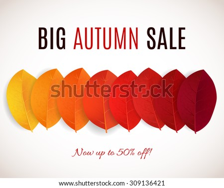 Fall sale design. Can be used for flyers, banners or posters. Vector illustration with colorful autumn leaves  - stock vector