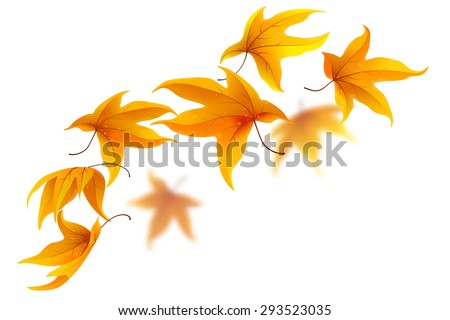 Falling autumn maple leaves on white background, vector illustration - stock vector