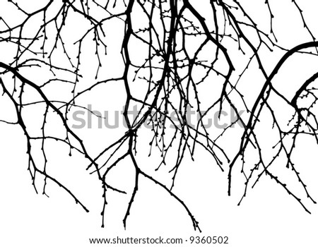 falling branch of tree - stock vector