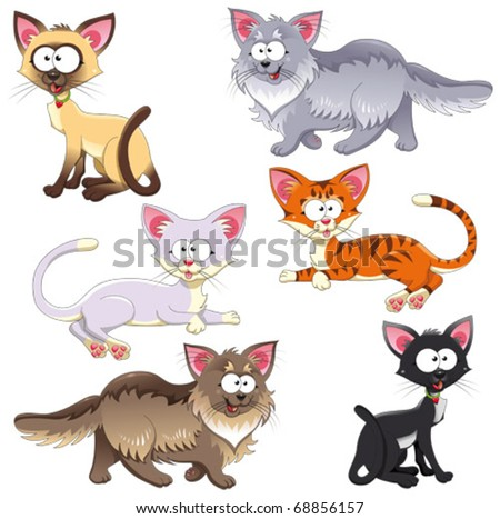 Family of cats. Funny cartoon and vector animal characters. Isolated objects - stock vector