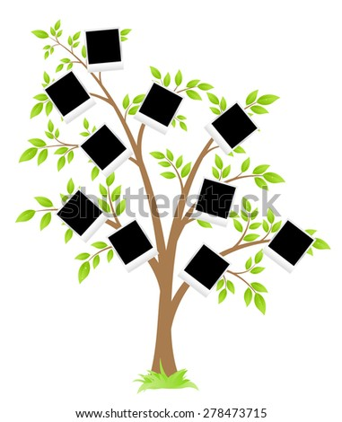 Family tree. Tree with frames for photos. Vector Illustration - stock vector