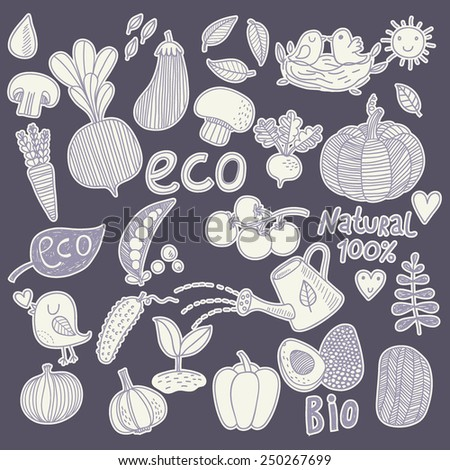 Fantastic eco food concept set in vector. Tasty mushrooms, vegetables and fruits in one eco concept vector - stock vector