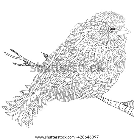 Fantastical Bird Coloring Book Amazing With Feathers And Patterns Plumage Black