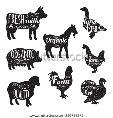 Farm animals set chalkboard decorative icons with cow sheep goose isolated vector illustration - stock vector