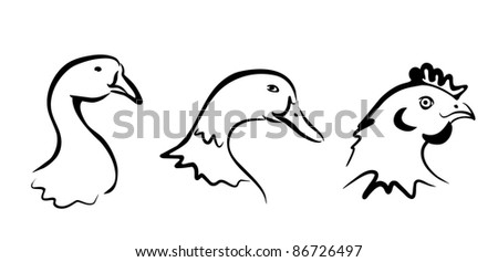 farm birds collection of symbols in simple black lines - stock vector