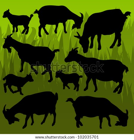 Farm dairy goats detailed silhouettes illustration collection background vector - stock vector