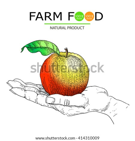 Farm food posters. - stock vector