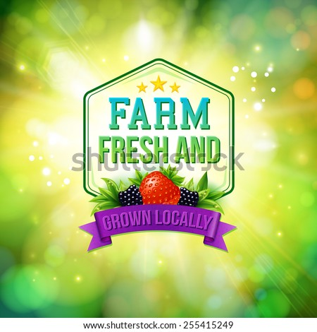 Farm Fresh and Grown Locally advertising poster with a sunburst over a sparkling green bokeh with a frame, banner and text decorated with fresh strawberry and blackberry, vector illustration. - stock vector