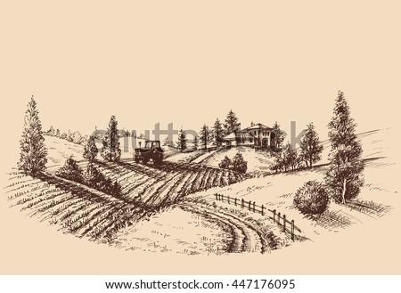 Farm landscape etch, agriculture scene - stock vector