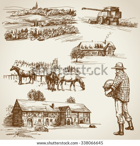 Farmland, harvest on the farm - stock vector