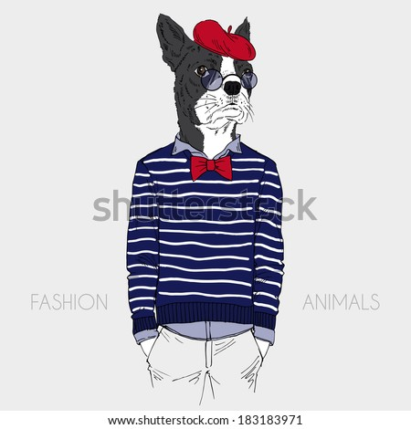 Fashion Illustration of dressed up french bulldog, parisien chic - stock vector