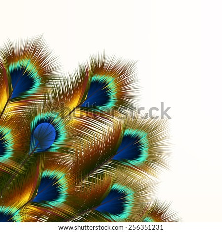 Fashion pattern with colorful feathers - stock vector
