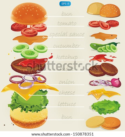 Fastfood. Hamburger ingredients with text. Vector illustration - stock vector
