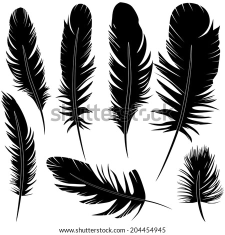 Feather of bird set vector illustration sketch - stock vector