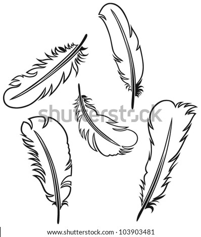 Feather Set