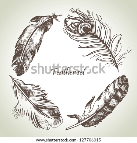 Feather set. Hand drawn illustrations - stock vector