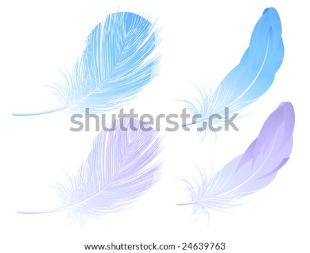 Feather set, vector illustration, EPS file included - stock vector