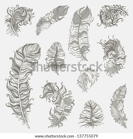 Feather set.  Vintage vector illustration. - stock vector