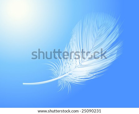 Feather, vector illustration, EPS file included - stock vector