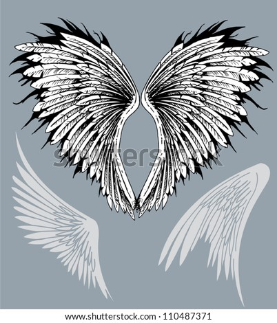 Feathered spread out angelic bird eagle hawk wings - stock vector