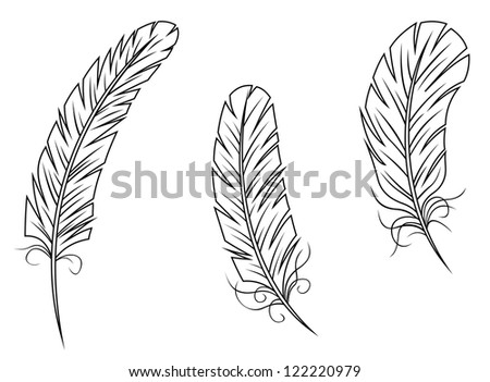 Feathers and quills isolated on white background. Jpeg version also available in gallery - stock vector