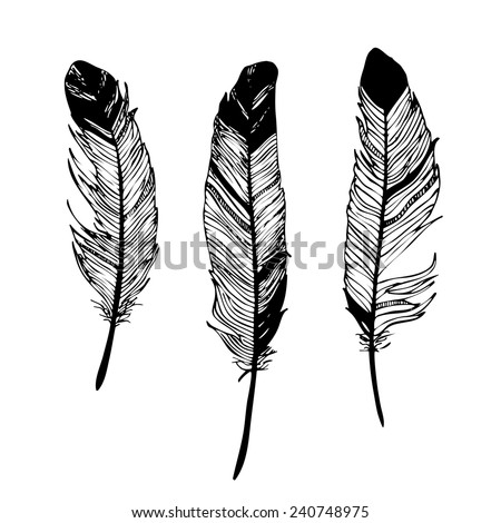 feathers black and white graphic drawing - stock vector