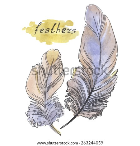 Feathers, watercolor illustration on a white background.