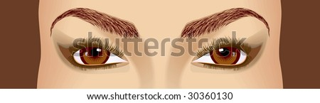 Female beautiful brown eyes and eyebrowes. A direct sight