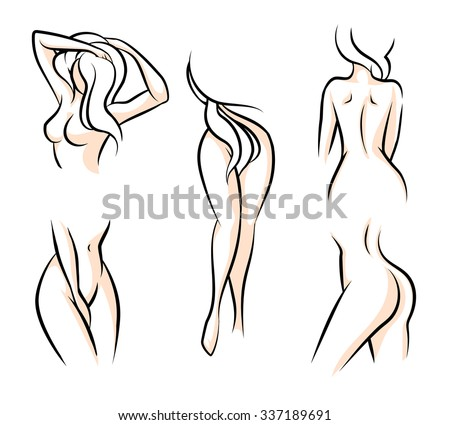 Female body parts. Waist attractive woman, hip naked, human model, vector illustration