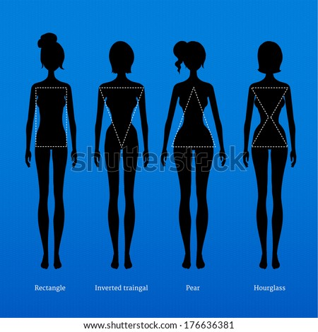 Female body types. - stock vector