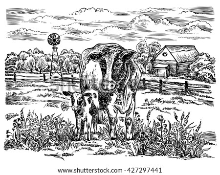 Field with cows. Vector hand drawn graphic illustration. Rural landscape. - stock vector