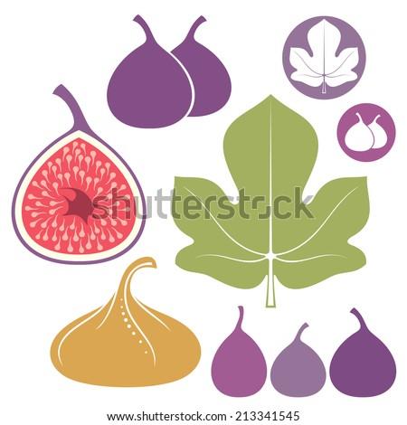 Fig. Icon set. Isolated fruit on white background