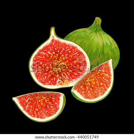 Figs isolated. Figs slice. Half figs. Closeup figs fruit. Vibrant colors. Sweet figs. Vector figs. Exotic fruit. Figs composition - stock vector