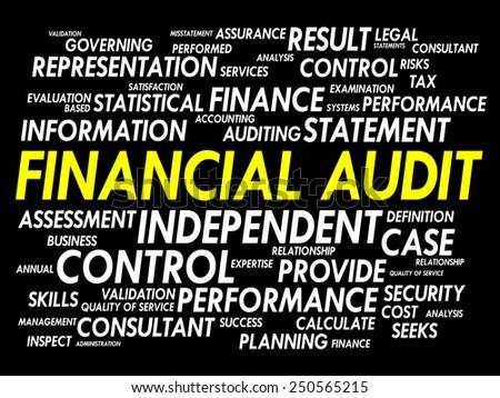 Financial Audit word cloud, business concept - stock vector