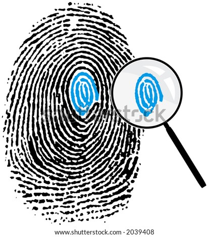 Fingerprint and magnifying glass. Attention to detail concept. - stock vector