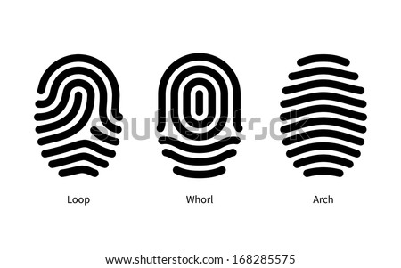 Fingerprint id types on white background. Vector illustration. - stock vector