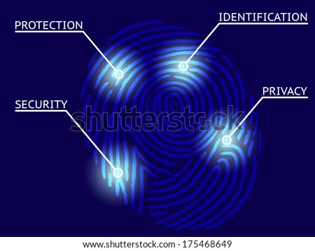 Fingerprint Identification with Whorls - Security and privacy concept