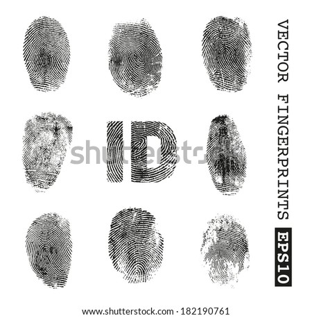 Fingerprints - stock vector