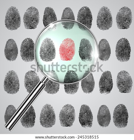 Fingerprints and a magnifier, vector - stock vector