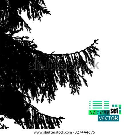 fir-tree tracing. Vector