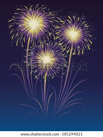 Fireworks display in the sky. - stock vector